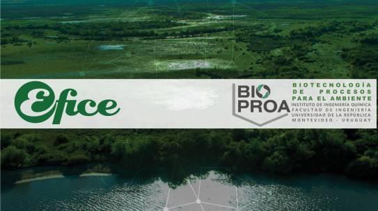 Planta modular para la remoción de fósforo en efluentes. Efice S.A. – BIOPROA