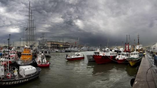 Regulación de la pesca de investigación y la investigación con fines ambientales.