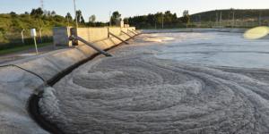 Proyecto: Alternativas de valorización de lodos